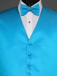 Simply Solids Malibu Bow Tie