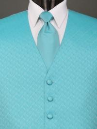 Spectrum Turquoise Solid Tie