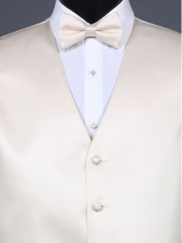 Simply Solid Champagne Bow Tie