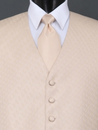 Spectrum Light Champagne Solid Tie