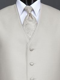 Sterling Bali Tan Paisley Tie
