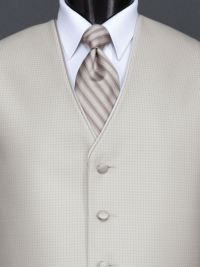 Sterling Bali Tan Stripe Tie