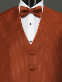 Sterling Cinnamon Bow Tie