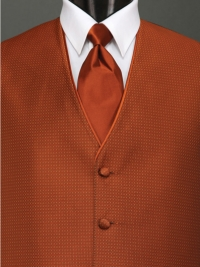 Sterling Cinnamon Solid Tie