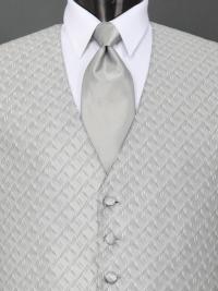 Spectrum Silver Solid Tie