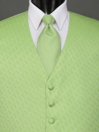 Spectrum Lime Solid Tie