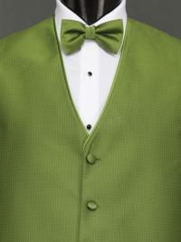 Sterling Kiwi Bow Tie