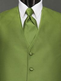 Sterling Kiwi Solid Tie