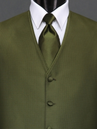 Sterling Olive Solid Tie