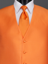 Reflections Tangerine Solid Tie