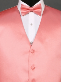 Simply Solid Coral Reef Bow Tie