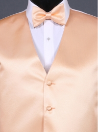 Simply Solid Peach Bow Tie