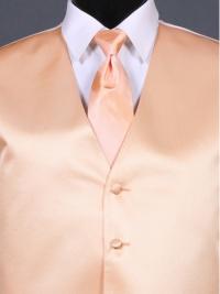 Simply Solid Peach Ombre Tie