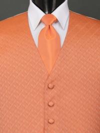Spectrum Tangerine Solid Tie