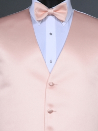 Simply Solid Blush Bow Tie