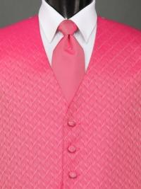 Spectrum Fuchsia Solid Tie