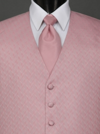 Spectrum Rose Solid Tie