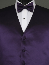 Simply Solid Grape Bow Tie