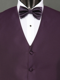 Solid Fusion Solid Eggplant Bow Tie