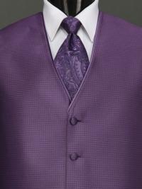 Sterling Amethyst Paisley Tie
