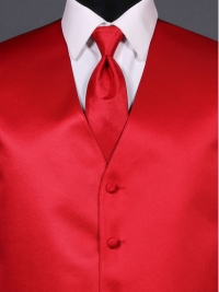 Simply Solid Ruby Ombre Tie