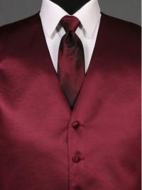 Simply Solid Wine Ombre Tie