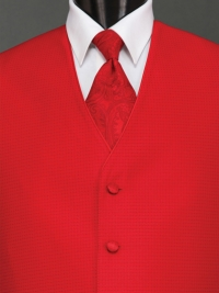 Sterling Ferrari Red Paisley Tie