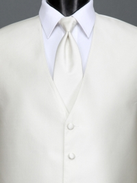 Reflections Ivory Solid Tie
