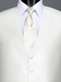 Reflections White Stripe Tie