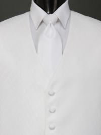 Spectrum White Solid Tie
