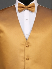Simply Solid Midas Gold Bow Tie