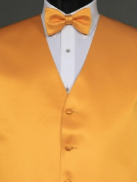 Simply Solids Affron Bow Tie