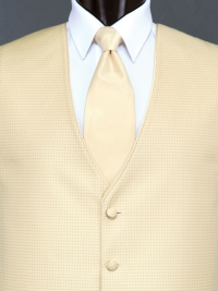 Sterling Gold Solid Tie